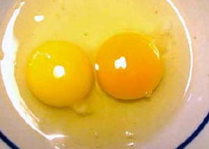 pale yolk vs. rich orange yolk