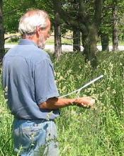 Steve, dowsing for water